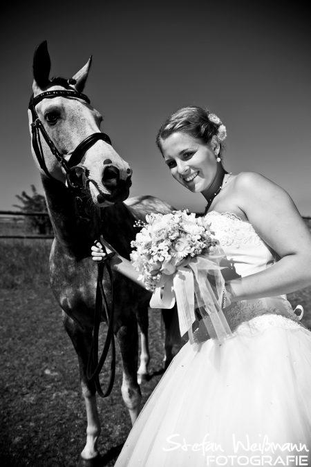 Hochzeit auf dem Pferdehof